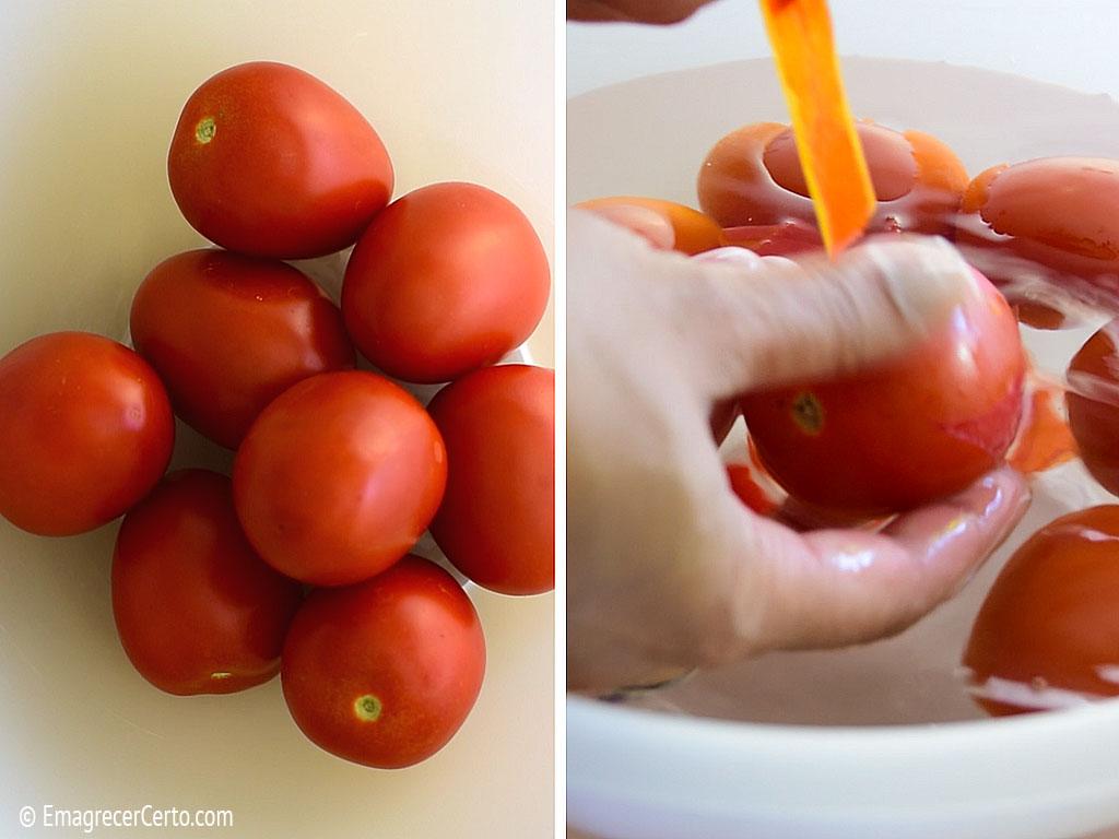 Cultivando tomate Meu Dedo Verde