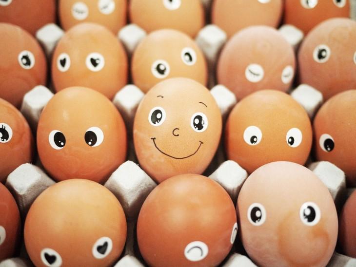 substituir ovos