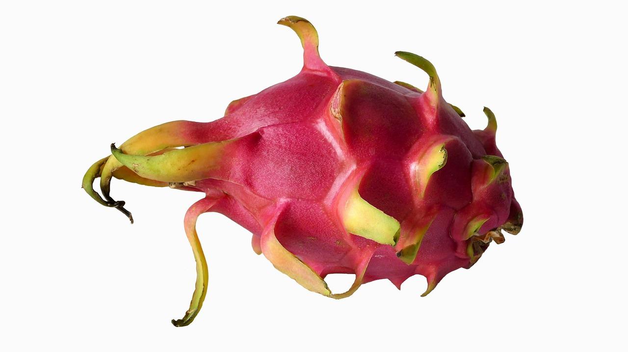 fruta do dragao pitaya
